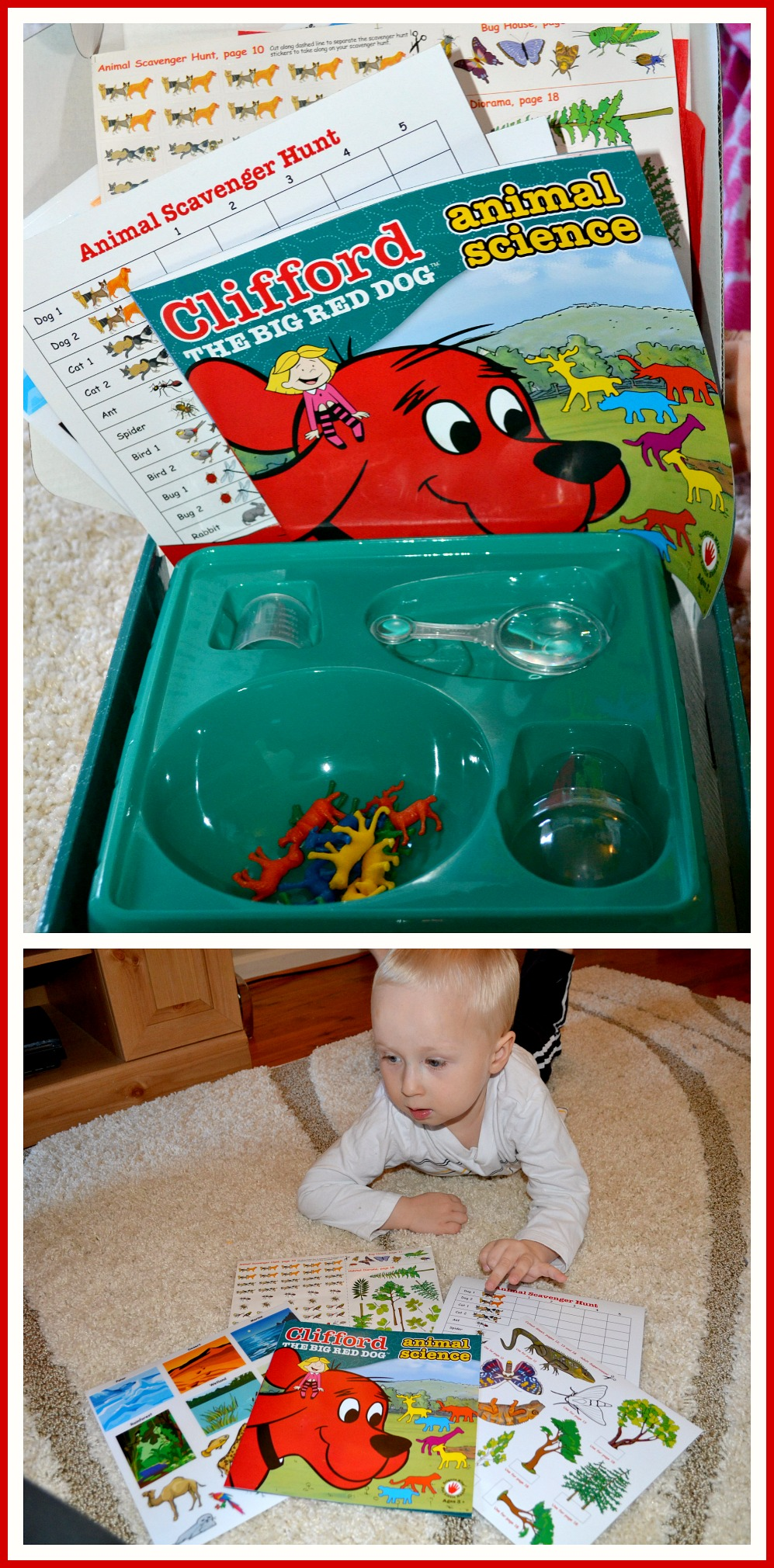 Clifford Animal Science Review
