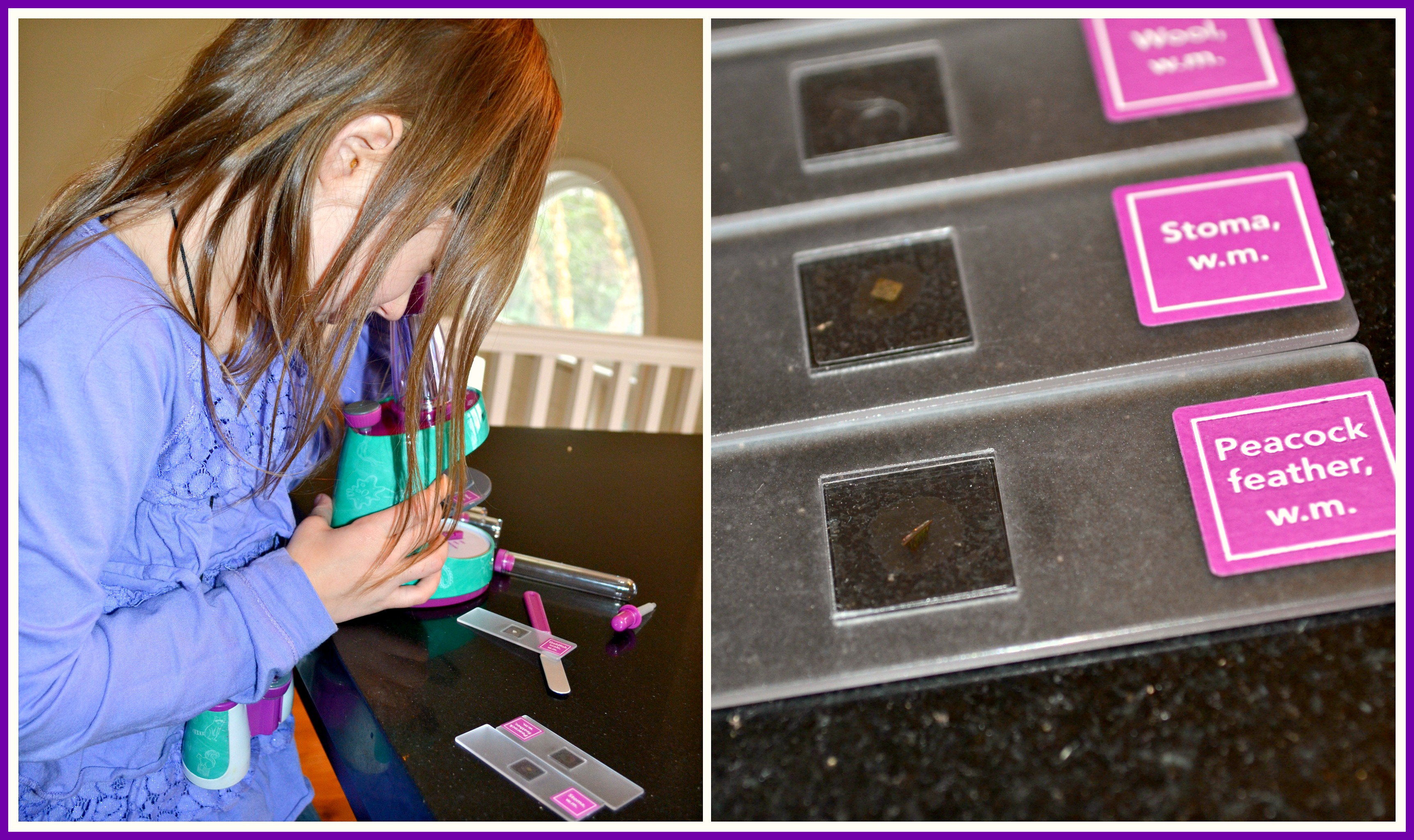 Nancy B's Microscope by Educational Insights Review