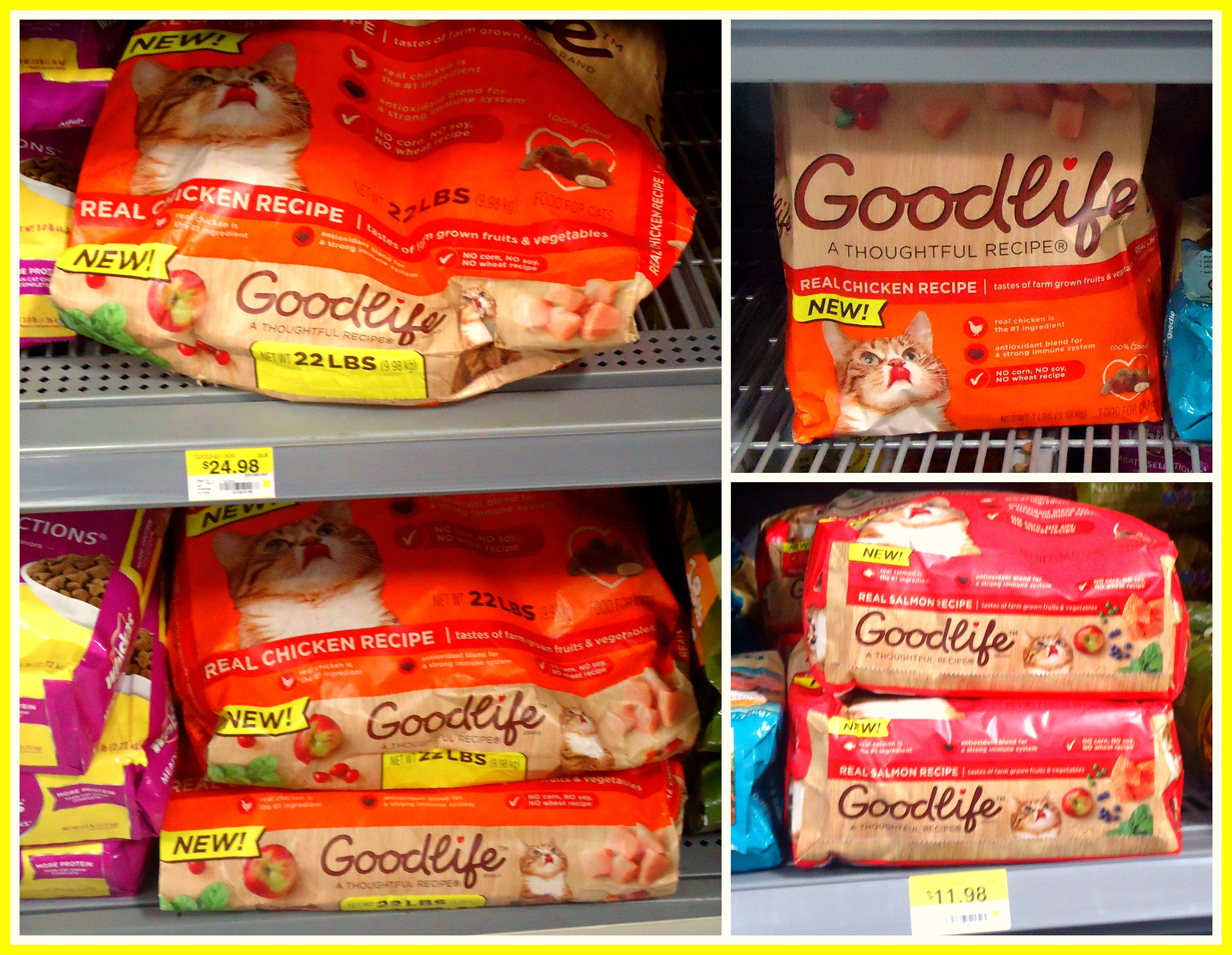 GOODLIFE™ Dry Cat Food #goodlifepet #CollectiveBias #Shop