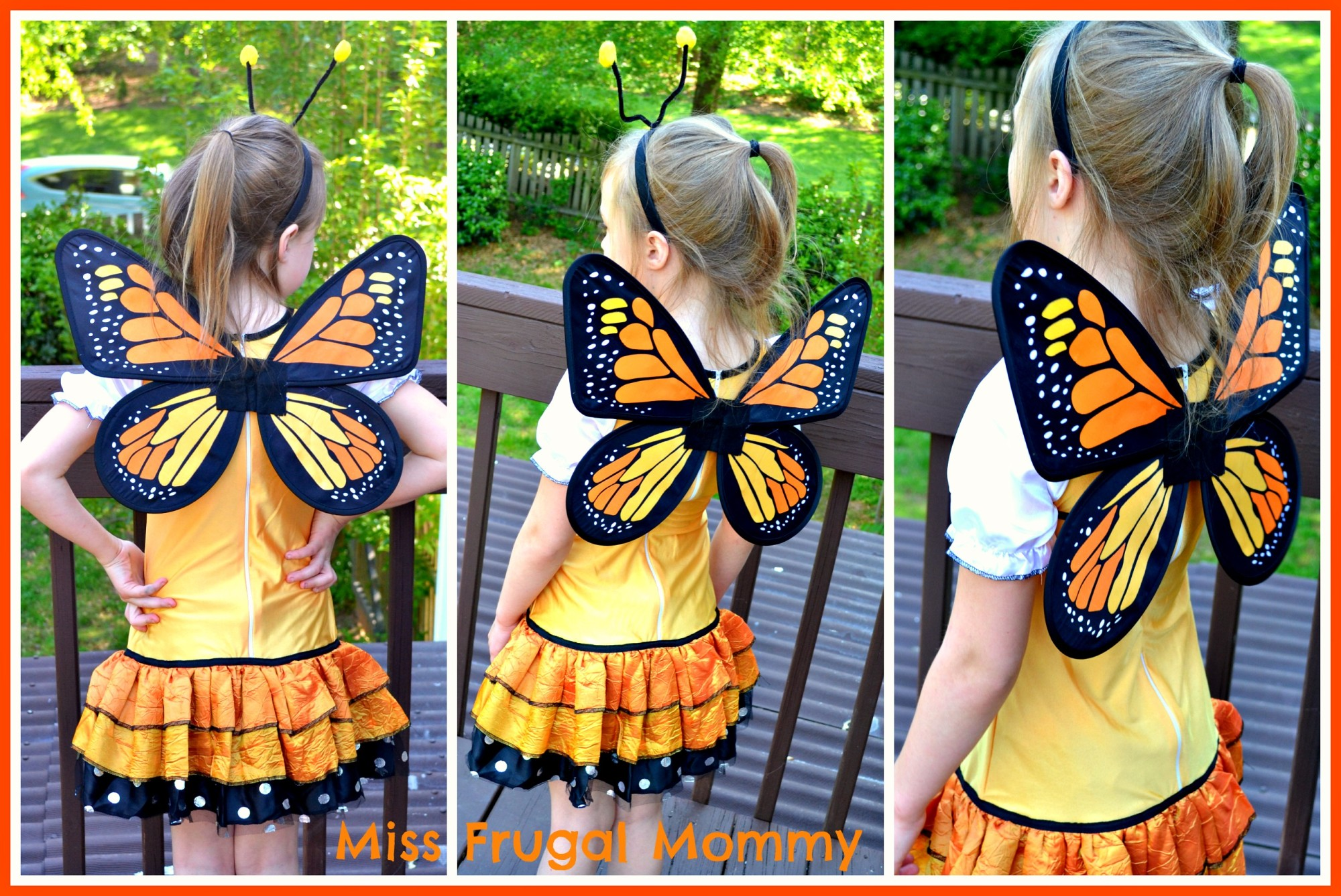 Costume Discounters: Butterfly Princess Costume Review