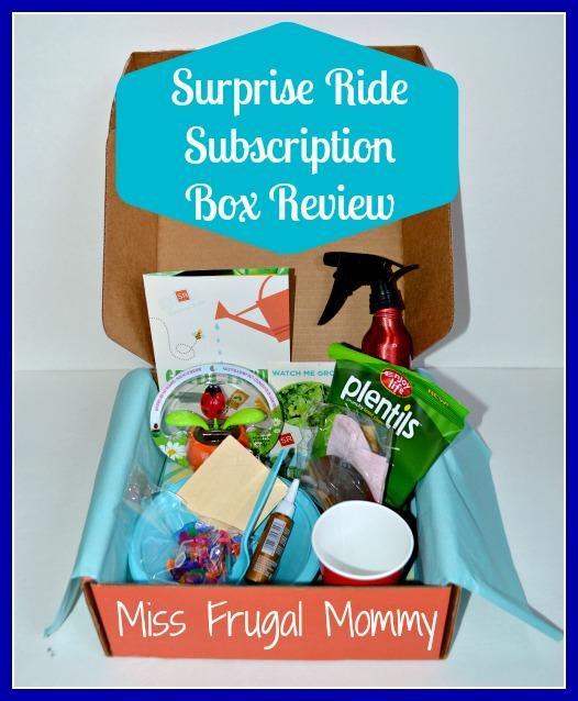 Surprise Ride: Subscription Box Review