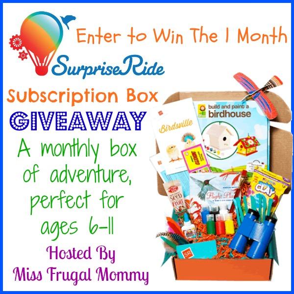 Surprise Ride Subscription Box Giveaway