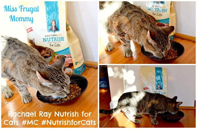 Rachael Ray Nutrish for Cats #MC #NutrishforCats