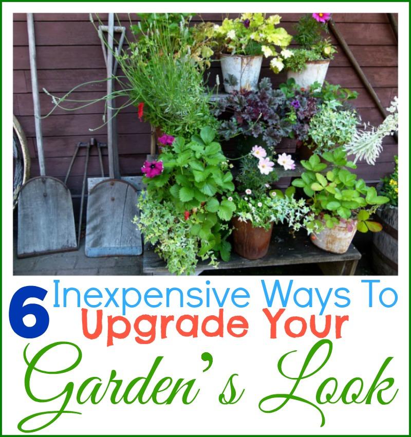 6 Inexpensive Ways To Upgrade Your Garden's Look