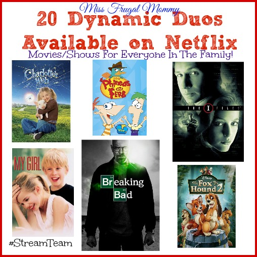 20 Dynamic Duos Available on Netflix #StreamTeam