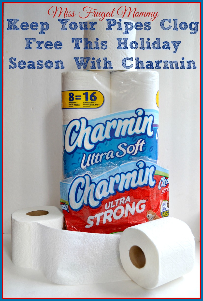 Keep Your Pipes Clog Free This Holiday Season With Charmin