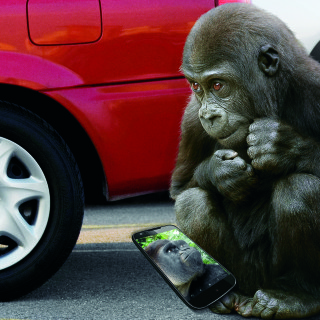 Keep Your Devices Safe With Gorilla Glass