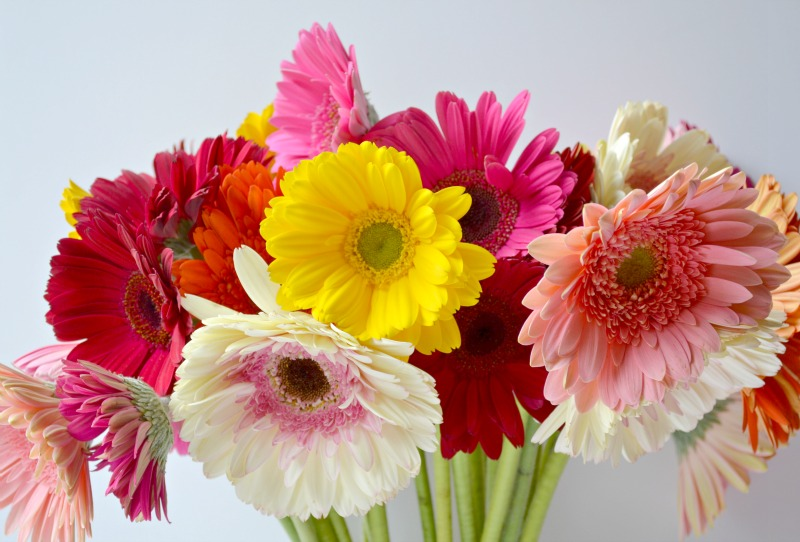 Fresh Blooms Delivered To Your Door