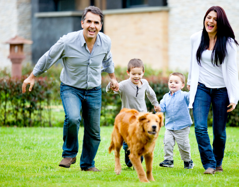 5 Great Ideas For Frugal Family Fun