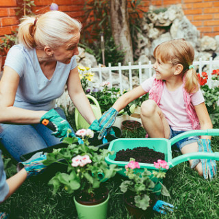 A Helpful Guide to Building a Planter Box with the Family