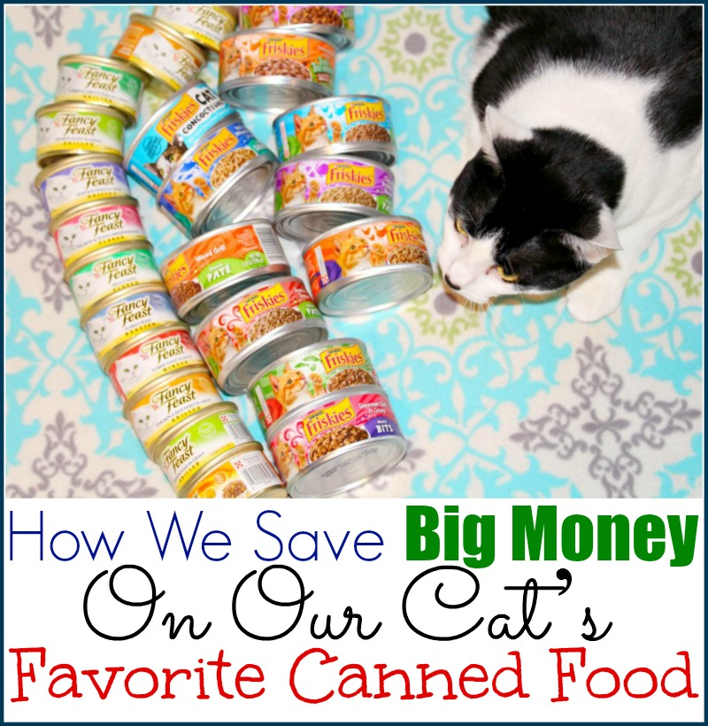 How We Save Big Money On Our Cat's Favorite Canned Food
