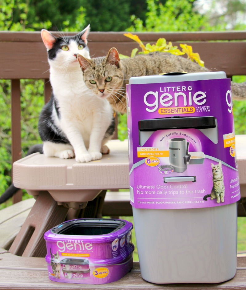 Keep Your Home Clean & Your Cat Happy With Litter Genie®
