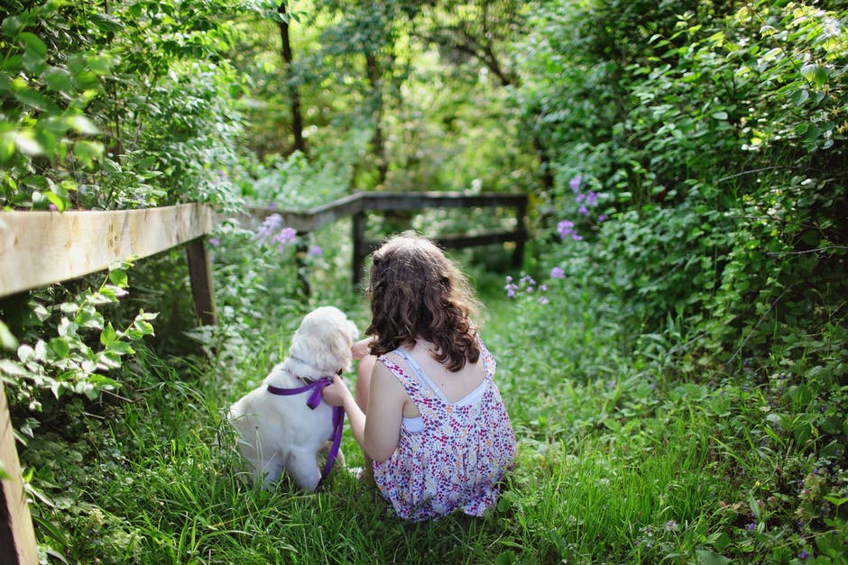 Cool Weekend Activities Your Kids Can Do With a Dog