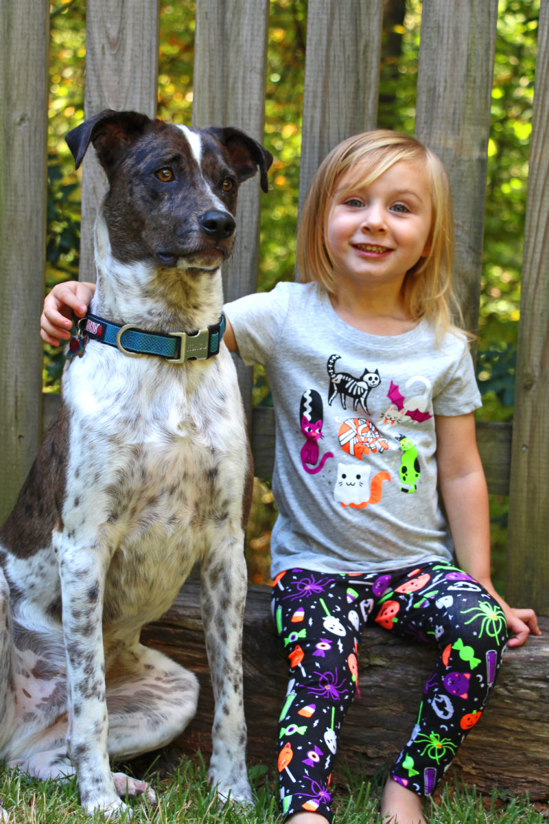 Tips For Taking Photos With Your Kid & Dog