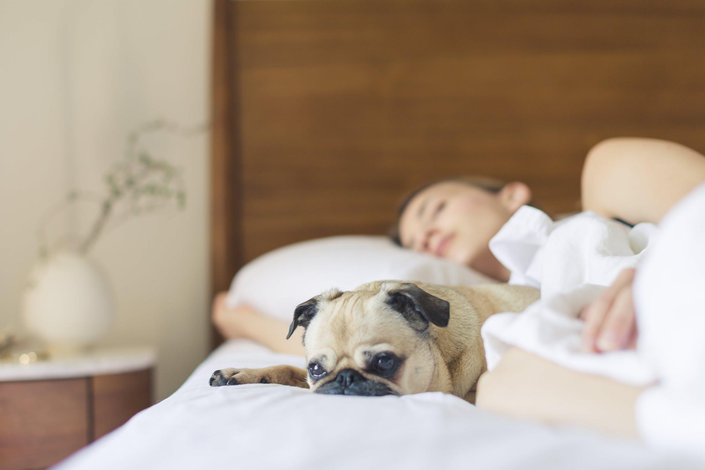 How to Get a Better Sleep
