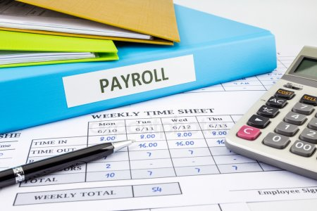 Is your Business Organization in need of Cloud-Based payroll solution?
