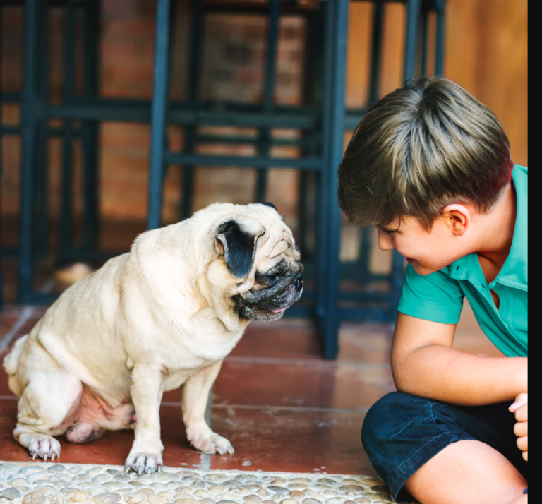 Tips on Choosing the Right Dog for Your Family