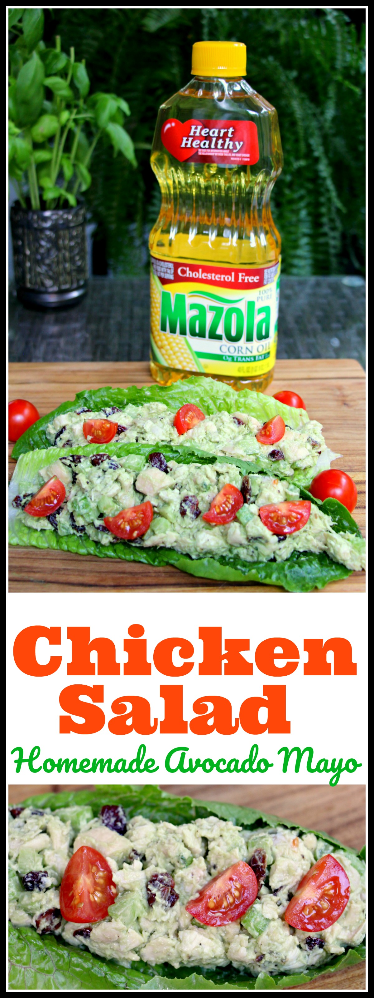 Chicken Salad With Homemade Avocado Mayo