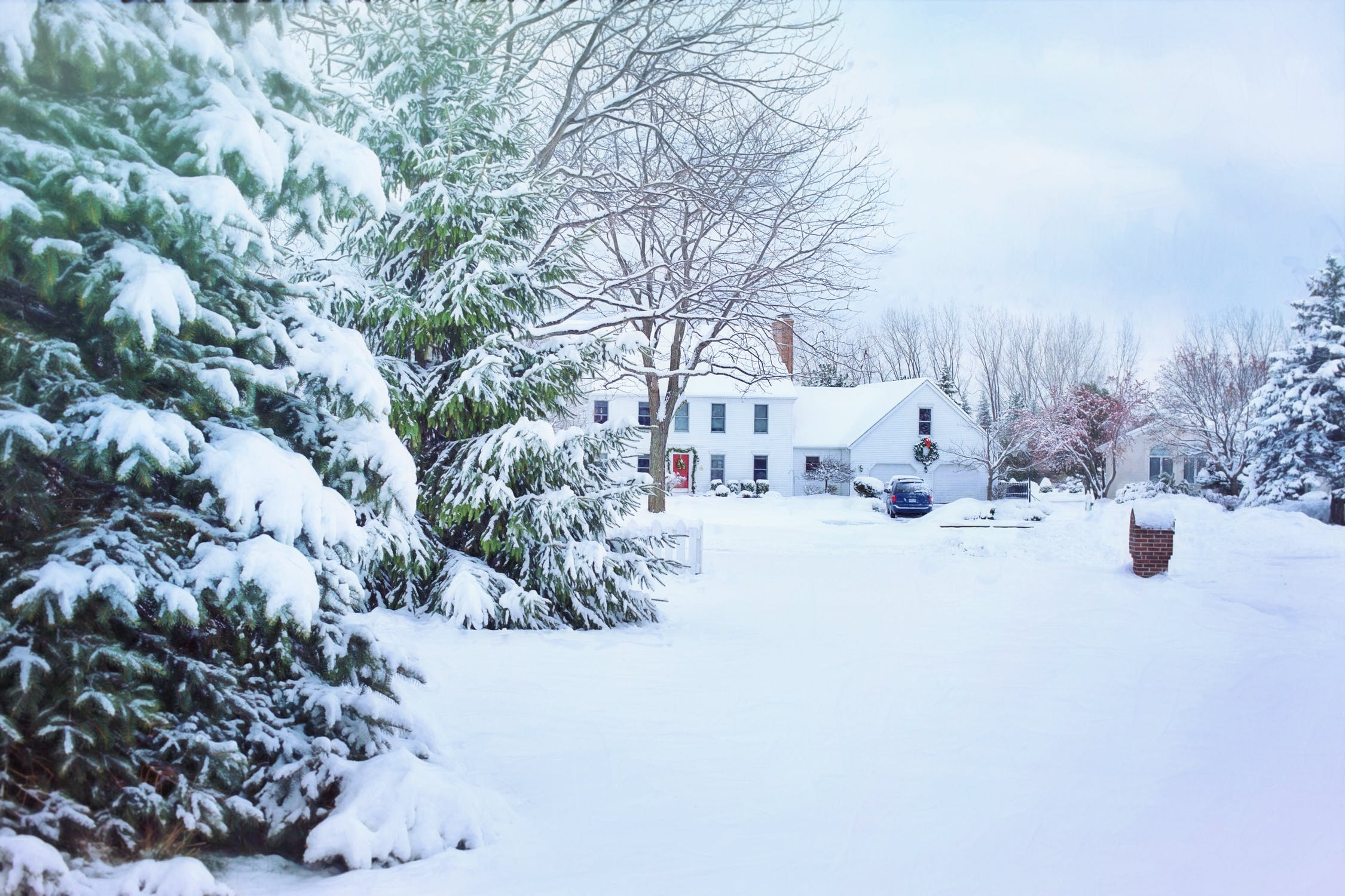 Best Ways to Keep Pests Out of Your Home This Winter