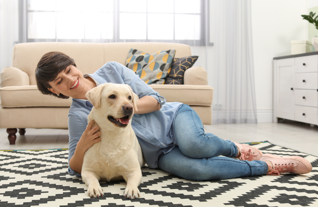 HVAC Systems for Pets & People