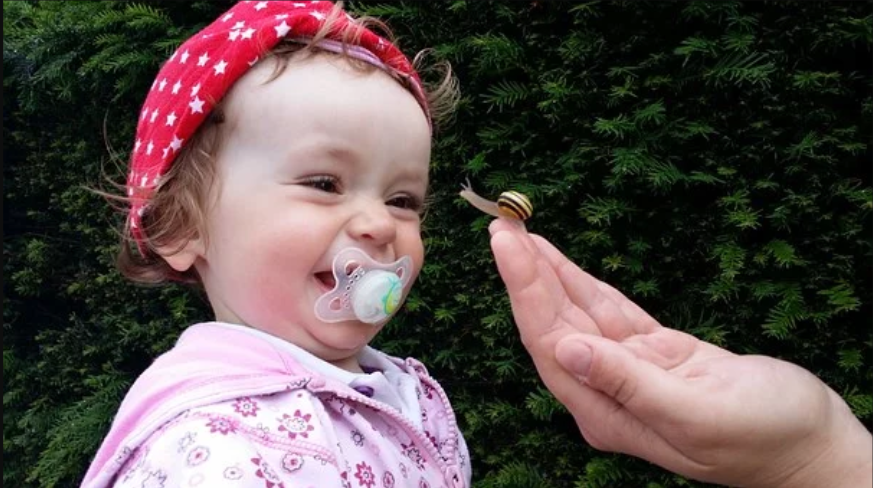 The Ultimate Guide to Choosing Pacifiers