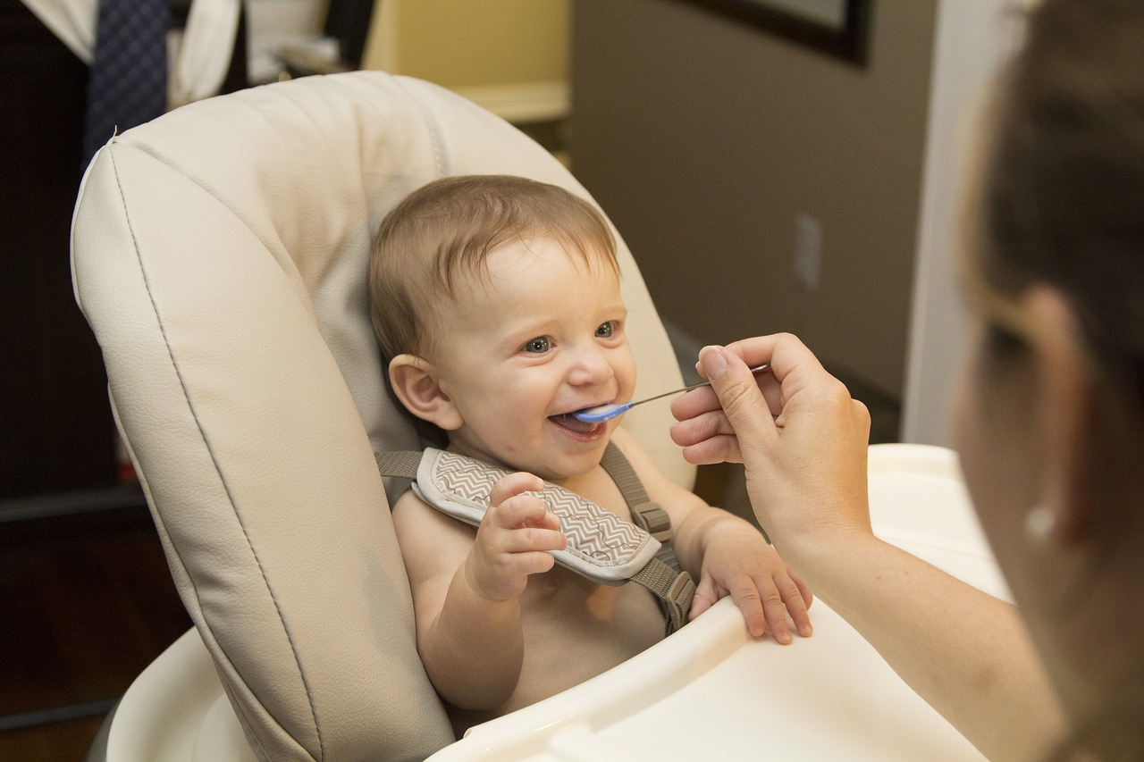 Top Baby Food Maker Buying Guides For Your Little One