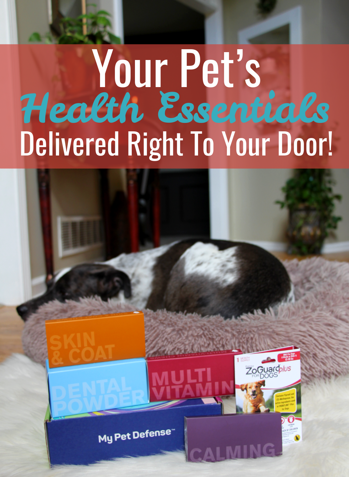 Your Pet's Health Essentials Delivered Right To Your Door!