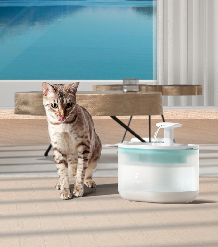 Get The Petlibro Capsule Fountain To Keep Pets Healthy And Hydrated